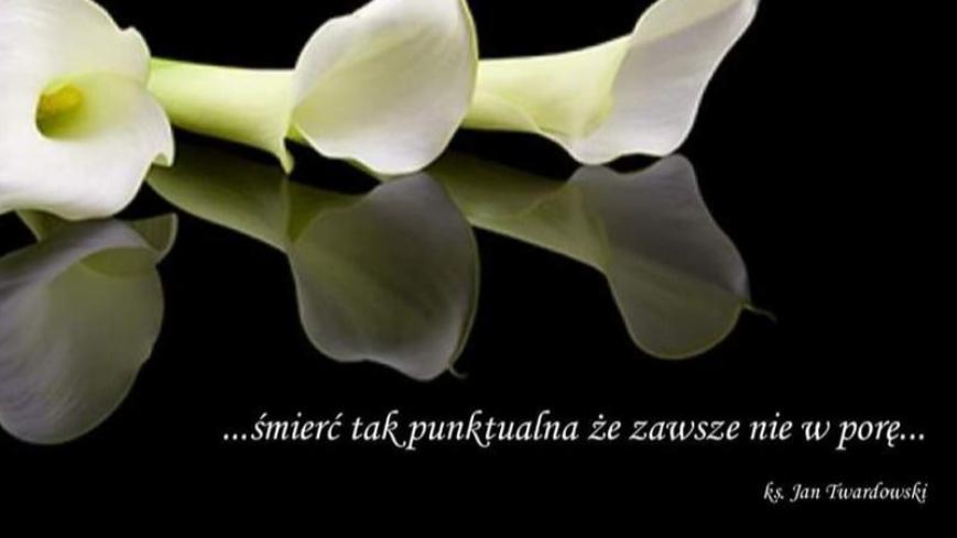 Lilie na czarnym tle z napisem: śmierć tak punktualna,że zawsze nie w porę ks. Jana Twardowskiego